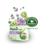 PHYTOXIL TRANSIT Comprimés B/20 à  JOUÉ-LÈS-TOURS