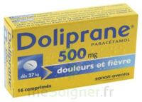 DOLIPRANE 500 mg Comprimés 2plq/8 (16) à  JOUÉ-LÈS-TOURS