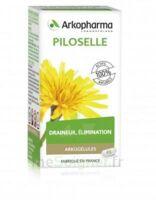 Arkogélules Piloselle Gélules Fl/45 à  JOUÉ-LÈS-TOURS