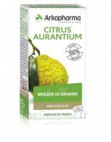 Arkogélules Citrus aurantium Gélules Fl/45 à  JOUÉ-LÈS-TOURS