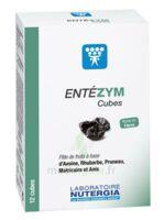 Entezym Cube à mâcher équilibre flore intestinale B/12 à  JOUÉ-LÈS-TOURS
