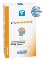 Ergyfosforyl Caps B/60 à  JOUÉ-LÈS-TOURS