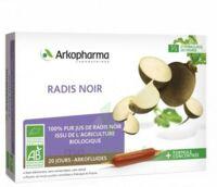 Arkofluide Bio Ultraextract Radis Noir Solution Buvable 20 Ampoules/10ml à  JOUÉ-LÈS-TOURS
