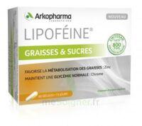 Lipofeine Graisse et Sucres Gélules B/60 à  JOUÉ-LÈS-TOURS