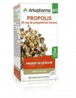 Arkogélules Propolis Bio Gélules Fl/45 à  JOUÉ-LÈS-TOURS