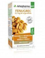 Arkogélules Fenugrec Bio Gélules Fl/40 à  JOUÉ-LÈS-TOURS