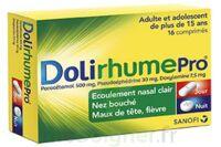 DOLIRHUMEPRO Cpr Plq/16 à  JOUÉ-LÈS-TOURS