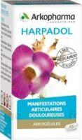 ARKOGELULES HARPAGOPHYTON Gélules Fl/150 à  JOUÉ-LÈS-TOURS
