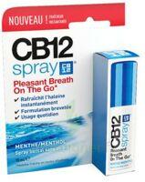 Cb 12 Spray Haleine Fraîche 15ml à  JOUÉ-LÈS-TOURS