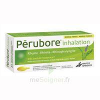 Perubore Caps Inhalation Par Vapeur Inhalation Plq/15 à  JOUÉ-LÈS-TOURS
