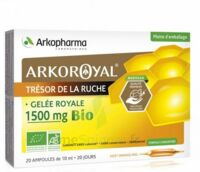 Arkoroyal Gelée royale bio 1500 mg Solution buvable 20 Ampoules/10ml à  JOUÉ-LÈS-TOURS