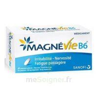 Magnevie B6 100 mg/10 mg Comprimés pelliculés Plaq/60 à  JOUÉ-LÈS-TOURS