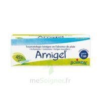 Boiron Arnigel Gel T(alumino-plastique)/45g à  JOUÉ-LÈS-TOURS