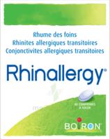 Boiron Rhinallergy Comprimés B/40 à  JOUÉ-LÈS-TOURS