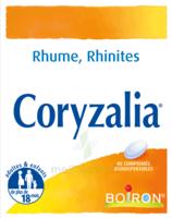 Boiron Coryzalia Comprimés orodispersibles à  JOUÉ-LÈS-TOURS