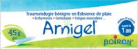 Boiron Arnigel Gel T/45g à  JOUÉ-LÈS-TOURS